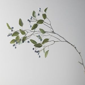 Anthropologie Terrain  Eucalyptus Berry Stem